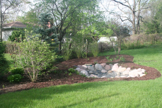 Rain gardens provide attracting drainage solutions in for Backyard flooding solutions